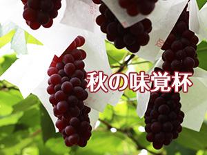 2018年10月18日(木) 秋の味覚杯(ハーフコンペ)